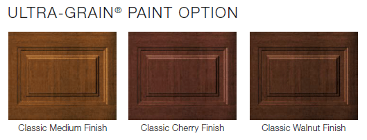 Premium Series Paint Option